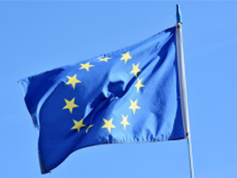 EU whistleblowers at risk unless changes made to draft directive!